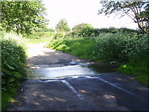 SJ8518 : Ford near Apeton by A Holmes