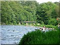 NZ2947 : River Wear at Finchale by Brian Abbott