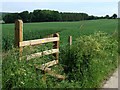 SO6695 : New Stile and Footpath, Shropshire by Roger  Kidd