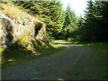 NS1981 : Blairmore Farm - Kilmun Track, Rock Outcrop by william craig