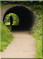 SO8304 : Cycle Track Tunnel by Linda Bailey