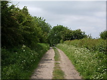 NY1039 : Track to Oughterside by Alexander P Kapp