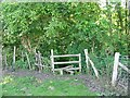 TR1959 : Stile entering Trenley Park Woods on the Stour Valley Walk by Nick Smith