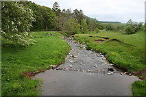 NT9207 : River Alwin near Clennell by Dave Dunford