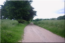 SJ8419 : Farm Track and Bridleway by Stephen Pearce