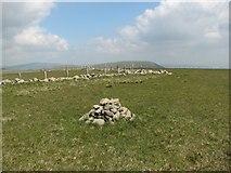 NT1515 : Firthhope Rig Summit by Callum Black