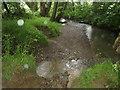 SS3301 : River Deer and tributary by Derek Harper