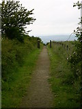 SD7513 : Footpath behind Millennium Garden, Affetside by liz dawson