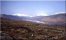 NH1804 : New plantation at Loch Loyne by Trevor Rickard