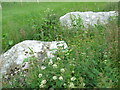 NJ8844 : Remains of Stone Circle at Auchmaliddie by Ken Fitlike