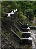 SC4384 : Laxey Valley Gardens by Chris Gunns