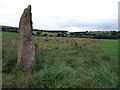 SN0628 : Budloy standing stone by ceridwen