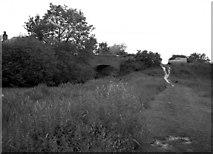 SU7451 : Colt Hill Bridge, Basingstoke Canal, Hampshire by Dr Neil Clifton