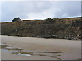 SZ2293 : Cliffs west of Barton-on-Sea by Stephen Williams