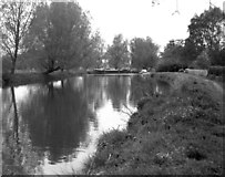 TQ0155 : Above Worsfold Gates, River Wey, Surrey by Dr Neil Clifton