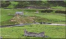 NO1485 : Newbigging, Glen Clunie by victor cammack
