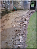 SE2768 : Damage to the Cloister path. by Matthew Hatton
