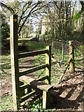 ST5295 : Stile from the Wye Valley Walk into Piercefield Park by Roy Parkhouse