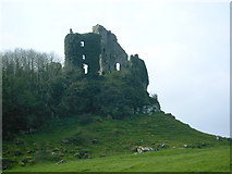 R4955 : Carrigogunnell Castle Ruins by Russ Davies