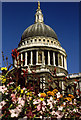 TQ3281 : St Paul's and Flowers by Martin Addison