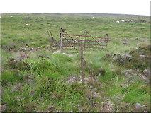 NN6566 : Hillside of Carn Dearg by Chris Wimbush