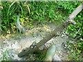 SU0781 : Wootton Bassett Mud Springs (4) by Brian Robert Marshall