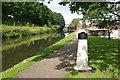 SJ5182 : Bridgewater Canal, Runcorn by Stephen McKay