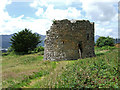 V9392 : Parkavonear Castle Aghadoe by Mike Searle