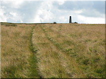 NY8154 : The track to the (northern) Allendale lead smelting flue chimney by Mike Quinn
