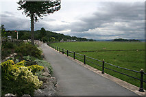 SD4077 : The Promenade, Grange-over-Sands by Kate Jewell