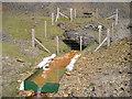 SN8074 : Pugh's Adit, Lead Mine by Chris Andrews