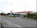 N8666 : Trim Road Esso Station by JP