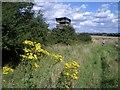 SP9882 : Watch Tower Near Green Side Wood by Nigel Stickells