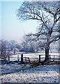 SJ9664 : Hannel Farm taken Winter 1976 by Barry Dale