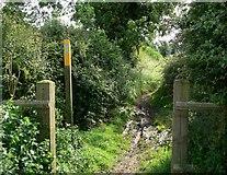 SP4994 : Public Bridleway to Sapcote by Mat Fascione
