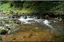 J3996 : River, Glenoe glen (5) by Albert Bridge