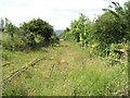 NZ2857 : Bowes Railway. by Donald Brydon