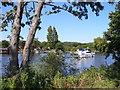 SU8887 : The Thames near Spade Oak Farm by Colin Smith