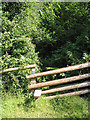 SO5627 : Stile to overgrown footpath by Pauline E