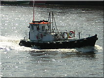 NZ4057 : Pilot on River Wear by rob bishop