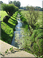 TF9615 : Tributary of R. Wensum on the edge of Gressenhall by Zorba the Geek