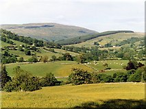 SD7186 : Buttercup meadows, Dentdale. by David Pickersgill