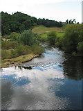 SO5819 : River Wye winding downstream from Kerne Bridge by Pauline E