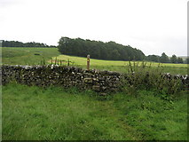 SD9058 : Pennine Way at Newfield by Chris Heaton