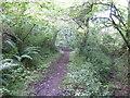 SM9401 : Pembrokeshire Coast Path by Jonathan Billinger