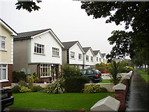 O2443 : Houses on Strand Road, Portmarnock by Ian Paterson