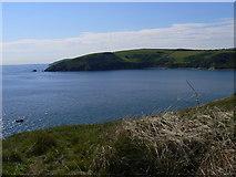 SX2551 : Portnadler Bay from Looe Island by Dan Friess