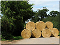 TG2532 : Straw bales near Tavistock Farm by Evelyn Simak