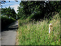 TG0628 : Bray's Lane with Roadside Nature Reserve by Zorba the Geek