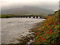V4779 : The Old Railway Bridge by Linda Bailey